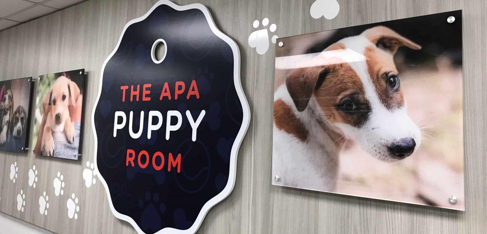 apa-puppy-room-2