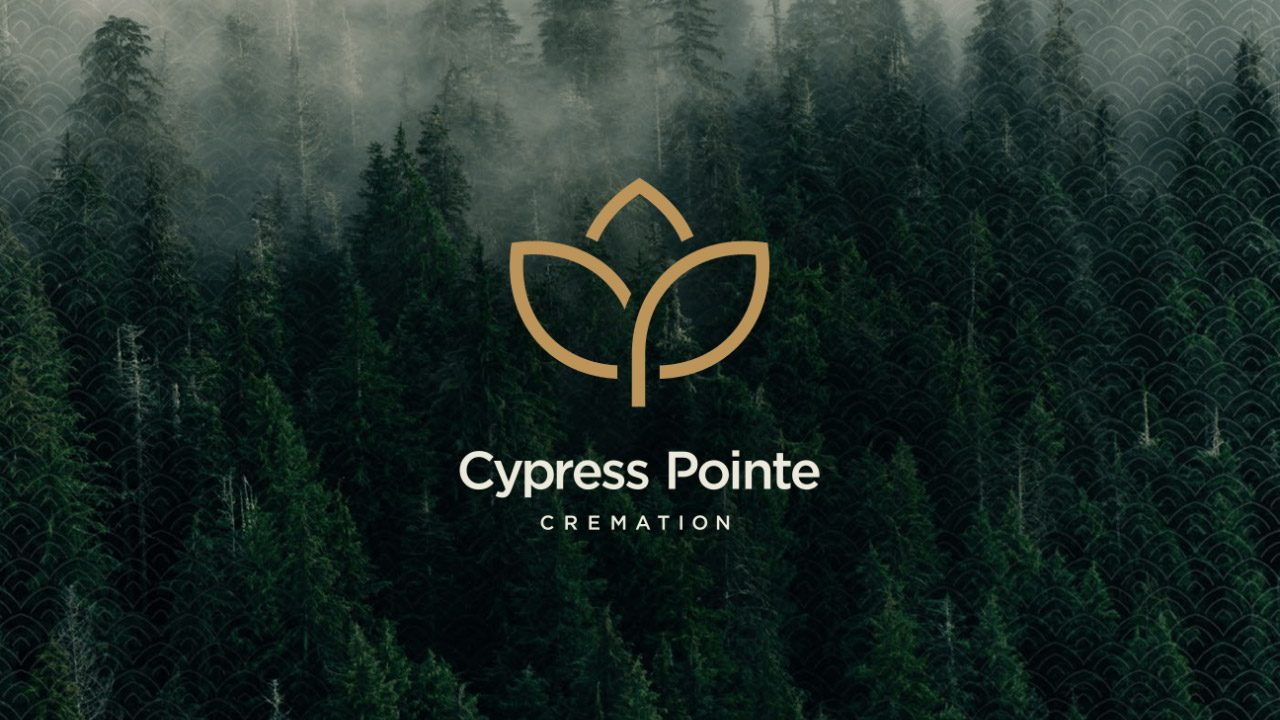 cypress-forest